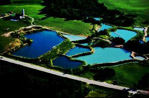 "Beautifully designed ponds shining with a blue glow thanks to Davies ""Aqua Blue""."